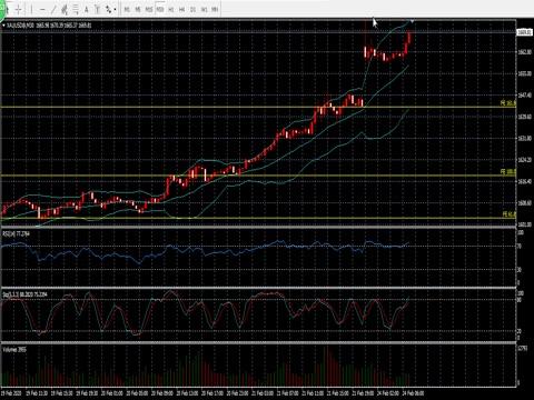 烨华:行情发展如预期进行,市场情绪有进一步攀升可能